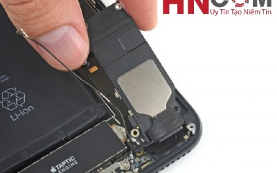 Thay loa ngoài iPhone 7/7 Plus